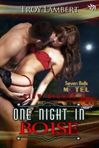 One-Night-in-Boise-by-Troy-Lambert-500-200x300